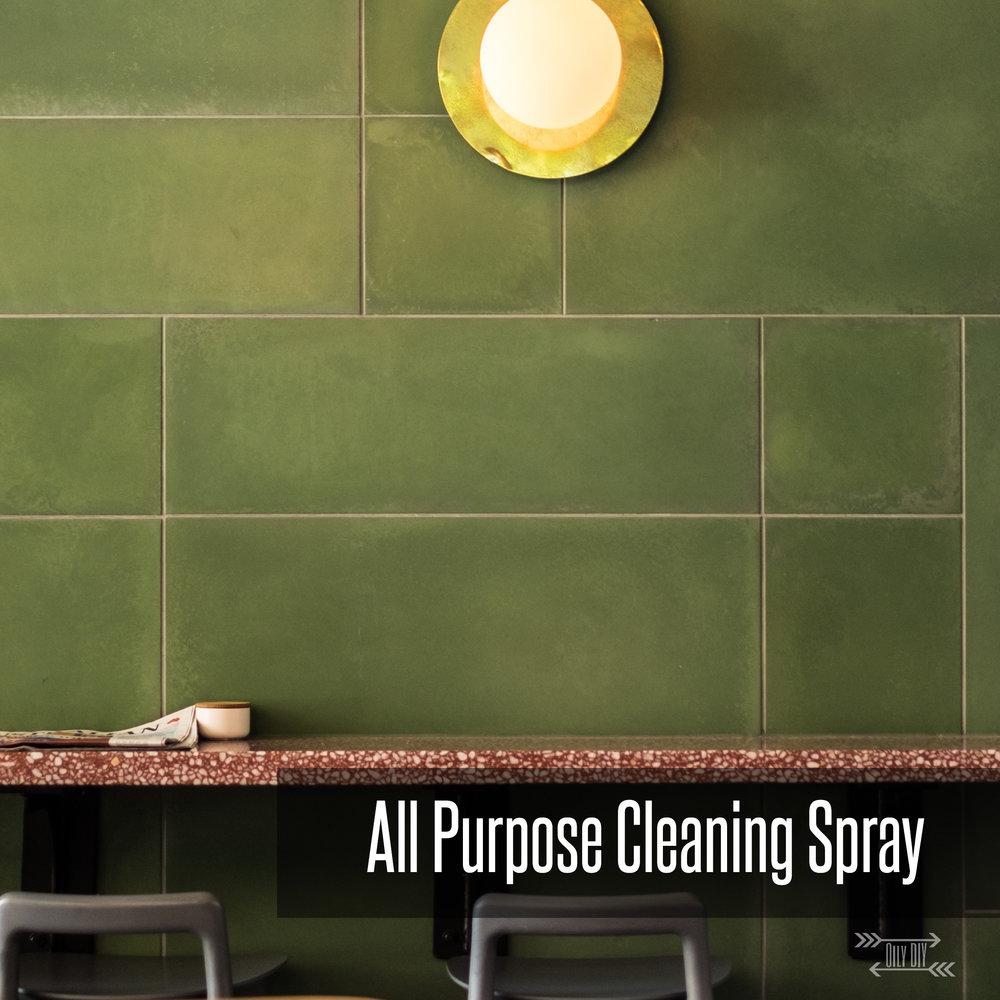 AllPurposeCleaningSpray1.jpg