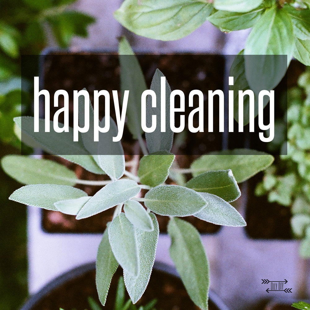 happycleaningTitle.jpg