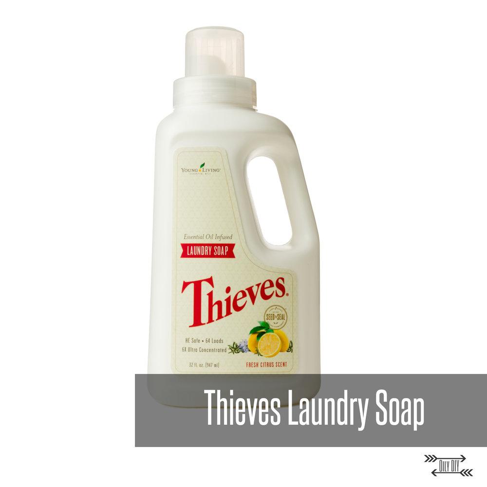 ThievesLaundrySoapTitle.jpg