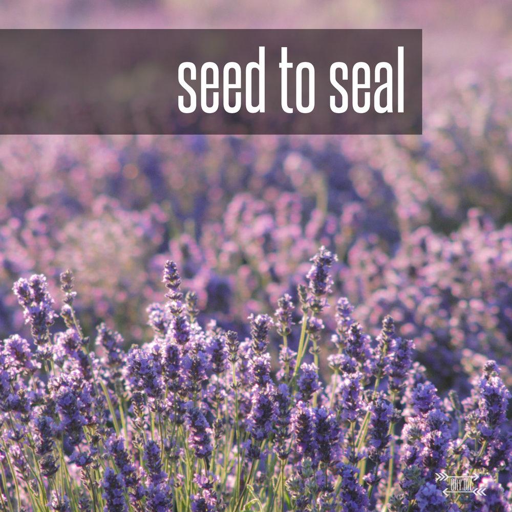 seedtoseal.jpg