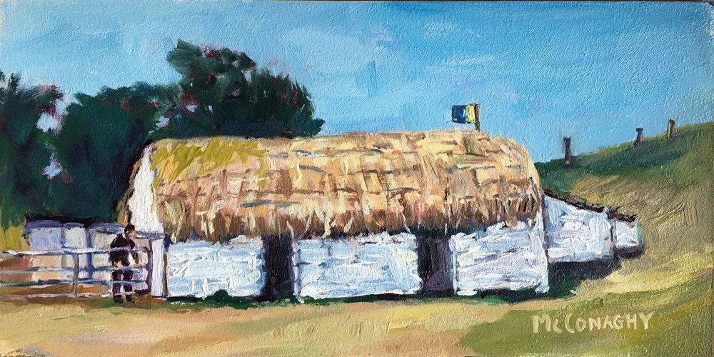 3x6thatched roof.jpg