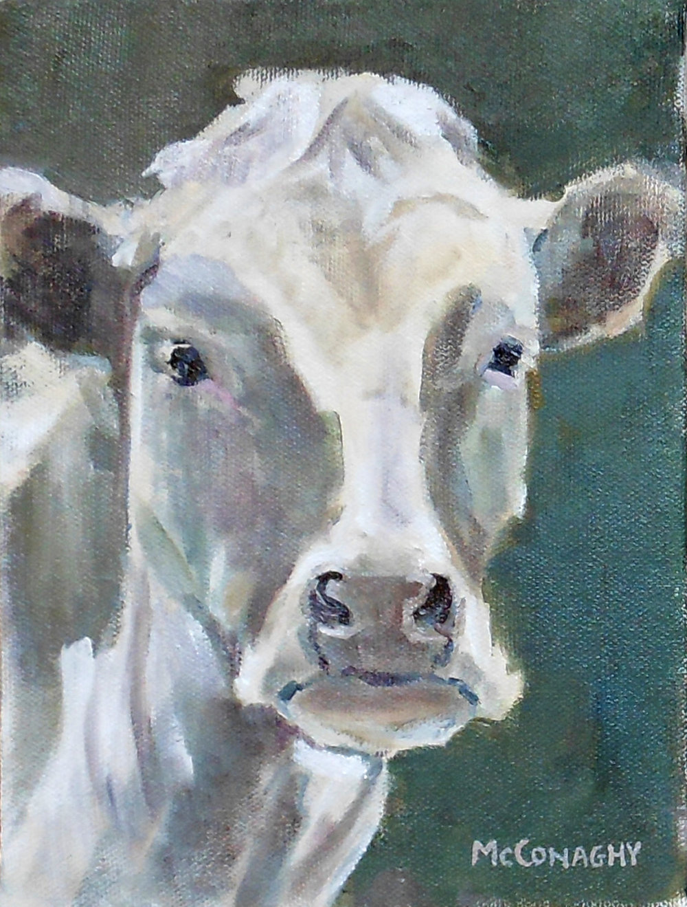 Northern Ireland Cow6x8.jpg