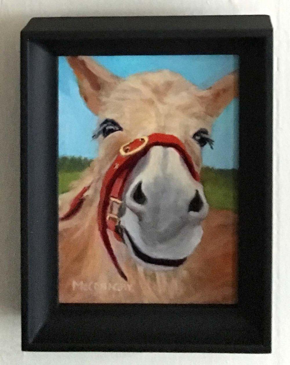 4x6 donkey..jpg