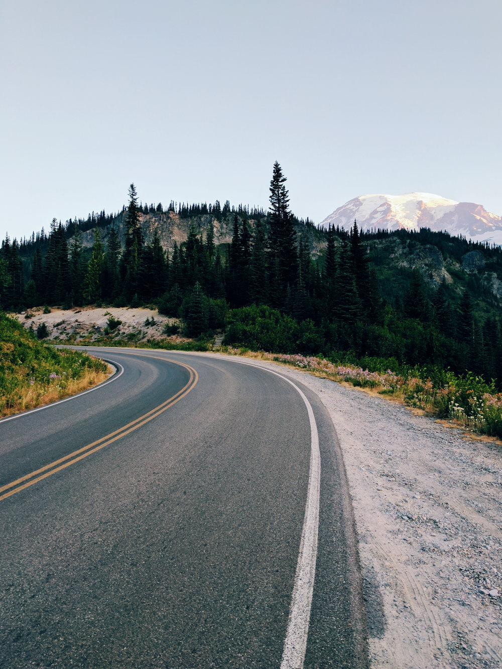 Road to Mt. Rainier