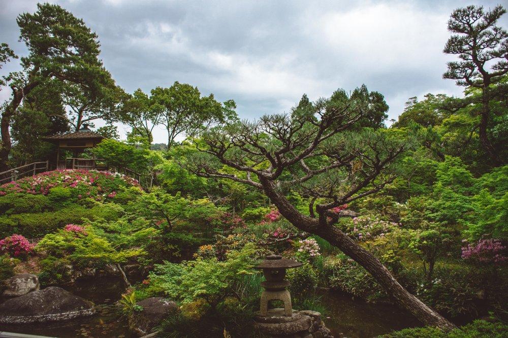 japan-alicia-fowler-8643.jpg