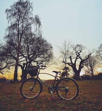 bike-sunset.jpg