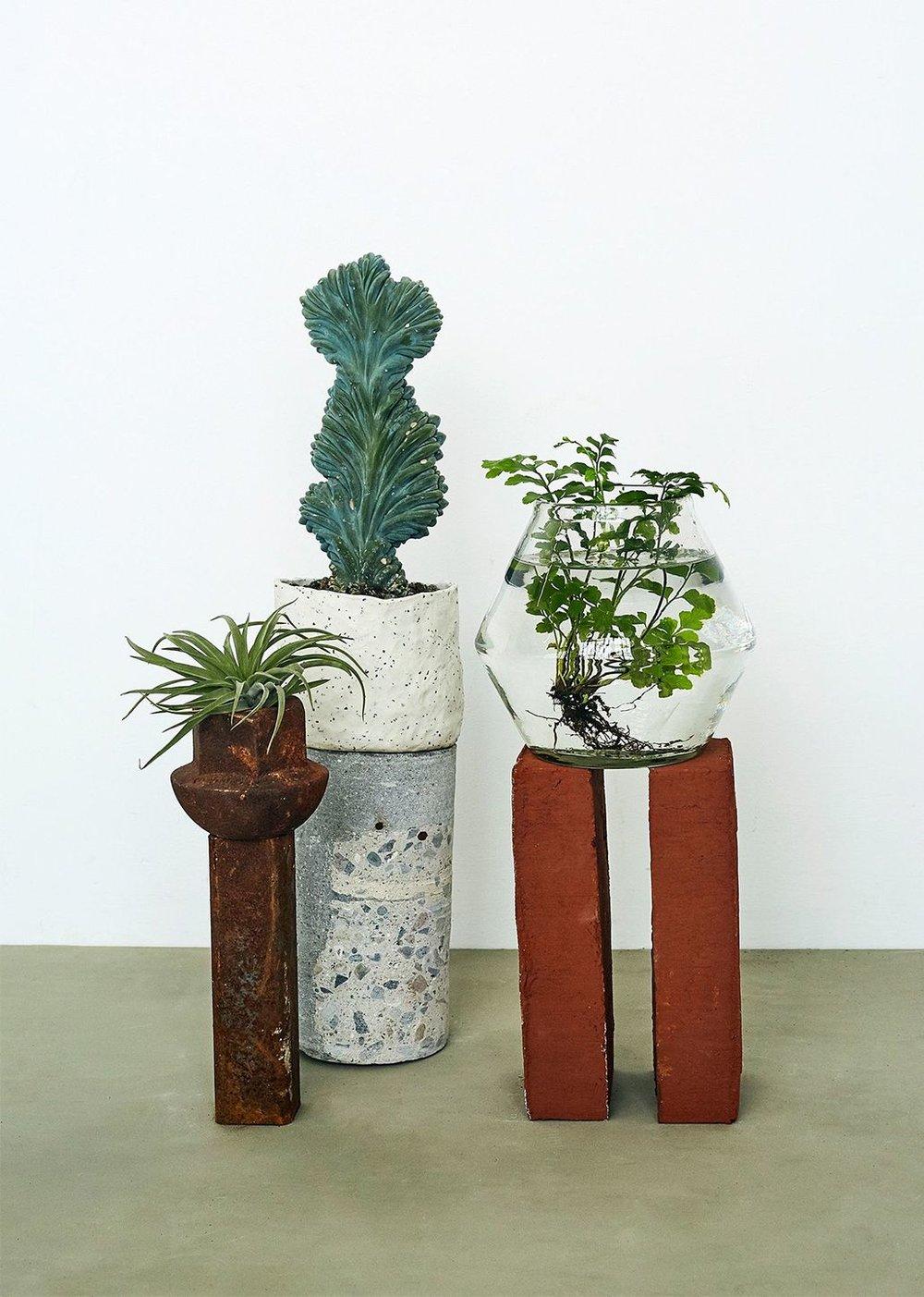 Book et møde med Plantepigerne Cille & Maja - Vi kigger gerne forbi jer, men I kan også booke et møde og komme forbi vores butik og showroom i Nordhavn. Vi kan levere fra uge til uge.Send os en mail til info@plantkbh.dk eller ring på 23 41 59 18.