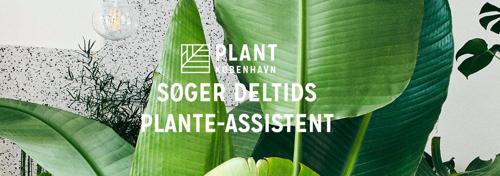 plant_assistent2019.jpg