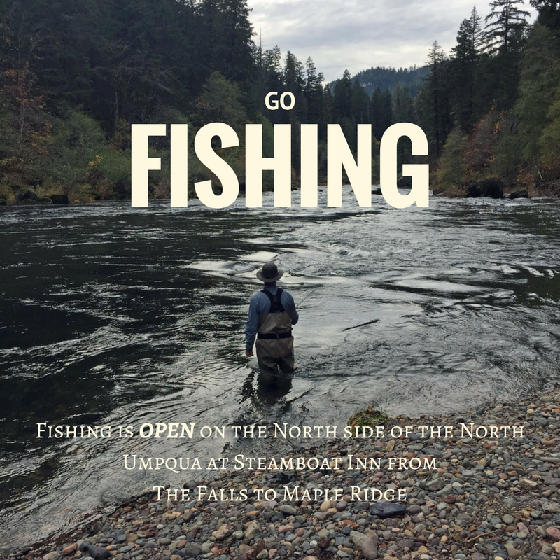 go fishing(1).png