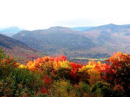 Fall in the White Mountians