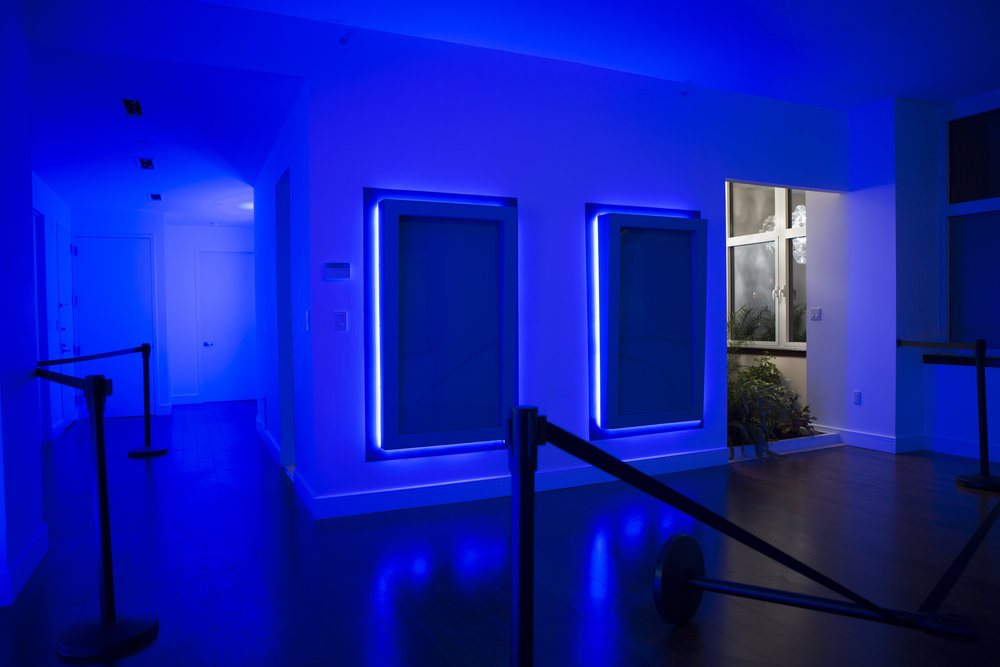 "Jonathan Mildenberg  Myth of a Forest , 2017 Existing Architecture, Wood, Paint, Plexi-glass, LED Lights, Aluminum, Stanchions, Self- adhesive Vinyl, 48"" Display, Stock Video, Soil, Sod, Kalanchoe blossefldiana, Hypoestes, Hypoestes phyliostachya, Nephrolepis obliterata, Zamioculcas zamiifolia, Epipremnum, Polyscias fruticosa, Schefflera arboricola, Water, Sunlight, Daylight Bulbs"