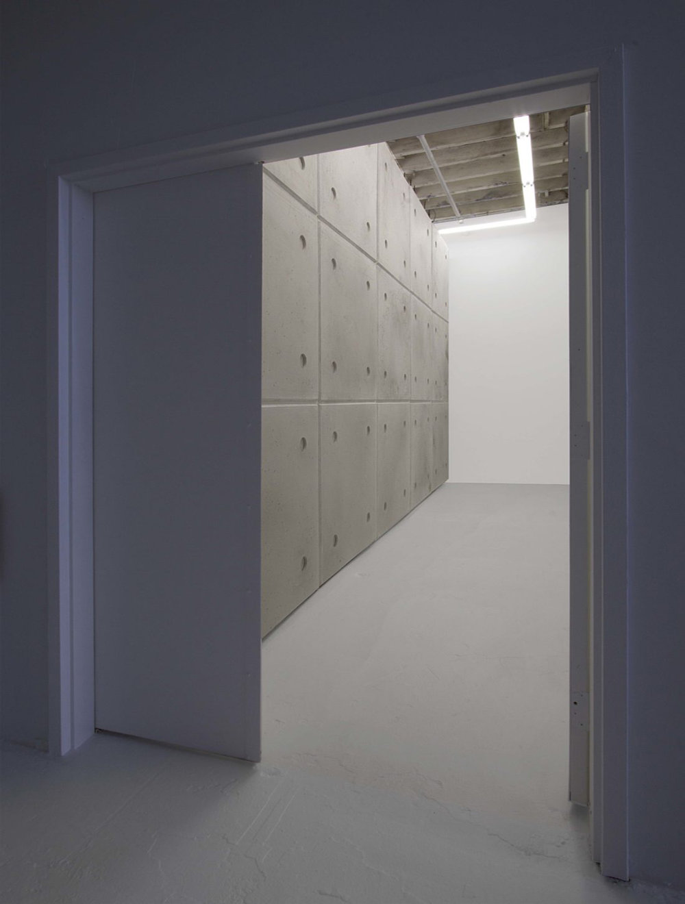 Mikkel Carl   Terrified of Society and Its Unclean Bite , 2018 dimensions variable to installation   M23/Project Room view from entry