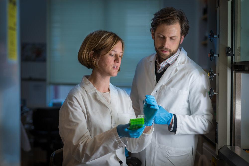 Researchers in a lab at Dana-Farber Cancer Institute