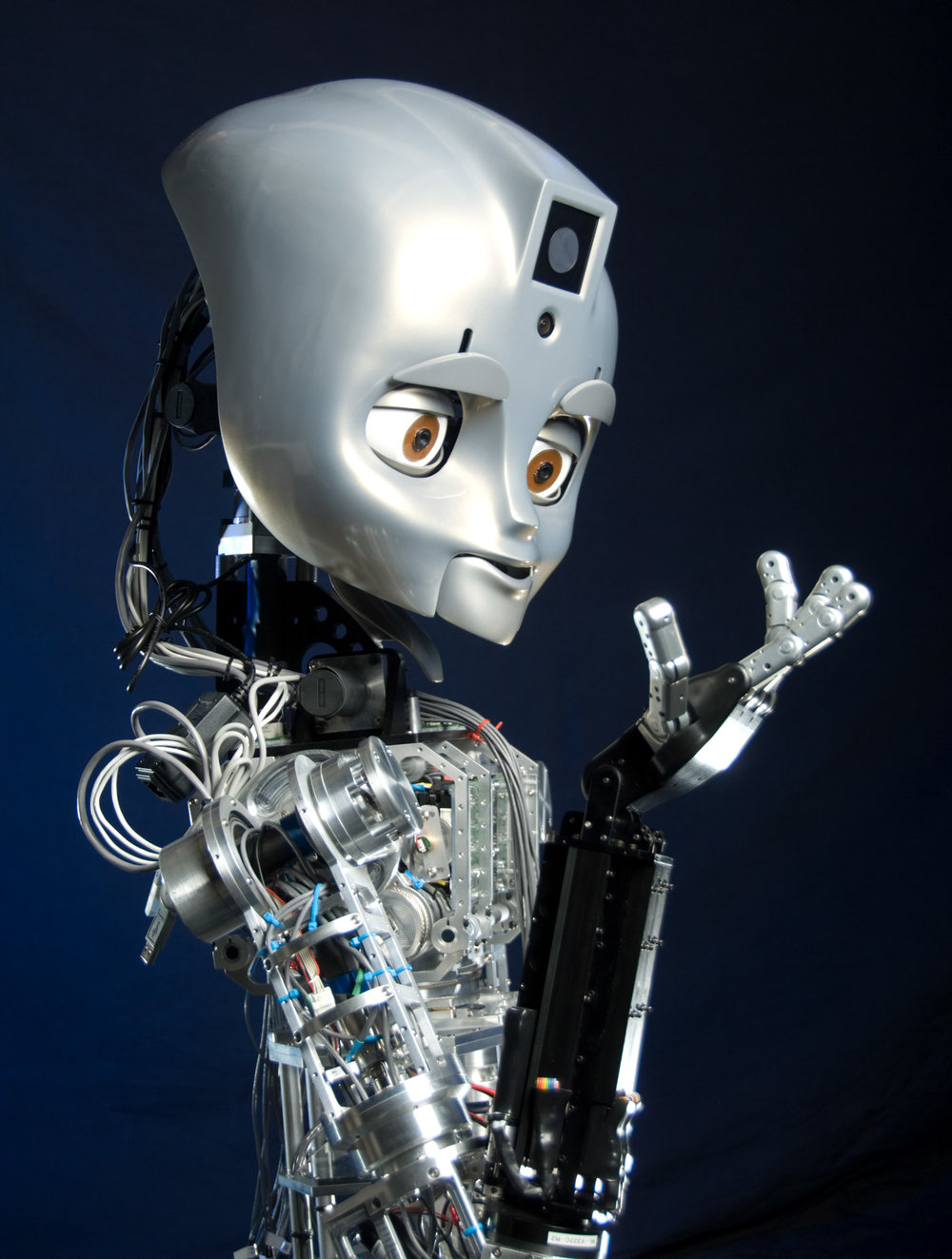 Maddox is a MDS (mobile, dexterous, social) robot from the MIT Media Lab.
