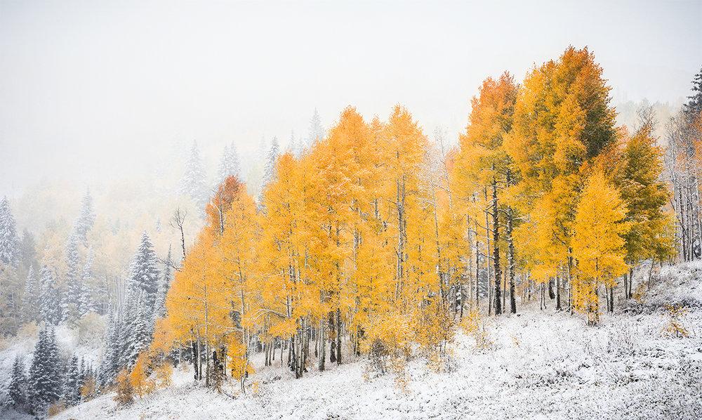 Kebler Snowtember_IG.jpg
