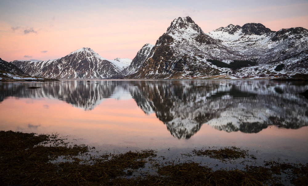 Fjordland.jpg