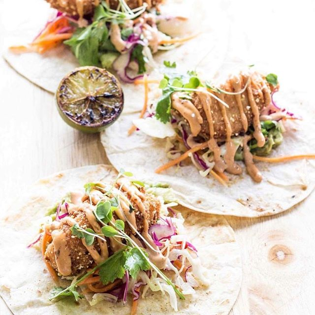 Fish 🌮 are back on the menu