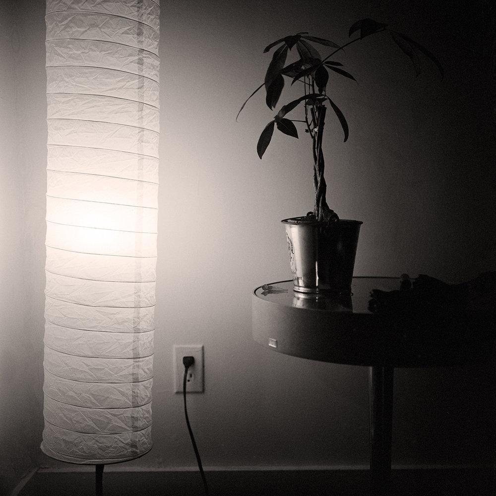 4xFilm-03.jpg
