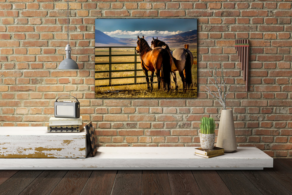 brick-wall-horses-gate.jpg