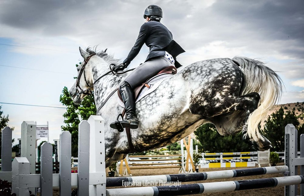 Meadow View Farms, Charity Horse Show - July 2018