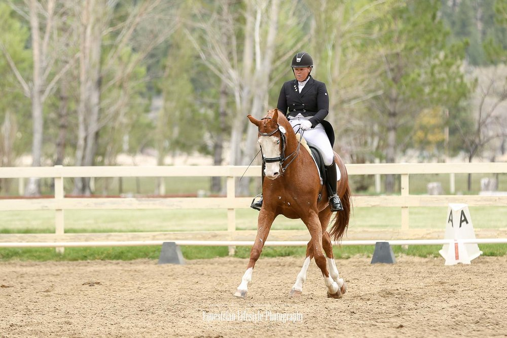 SNC Dressage Show,Franktown Meadows - April 2018