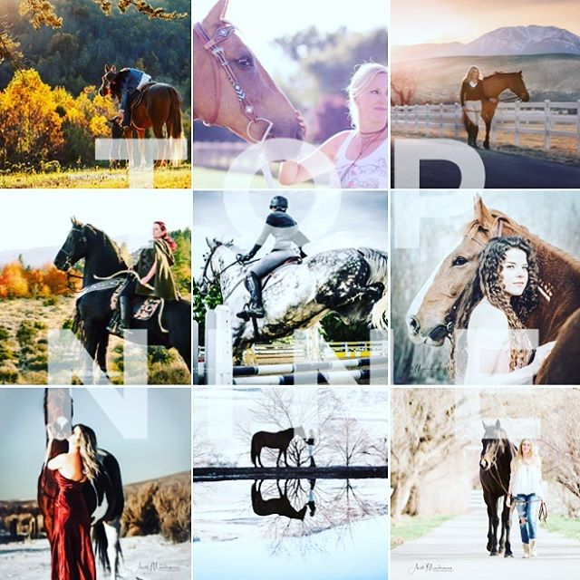 Sending you my last post of this year and finish it with my Top 9 images of 2018! Wishing you all a fabulous Happy New Year. Thank you all for following my feed and liking my images, it truly means everything to me! Let's 🎉 celebrate and cheers to another 12 awesome new chapters with 365 new days! . . #equinephotographer #equestrianlifestyle #equestrianlifestylephotographer #canonshooter #equineportrait #horseandgirl #inlovewithequines #horseportrait #horsecrazy #canon5dmarkiii #horsephotography #creatememoriesbyanett #happynewyear2019 #top9of2018 #rockineve
