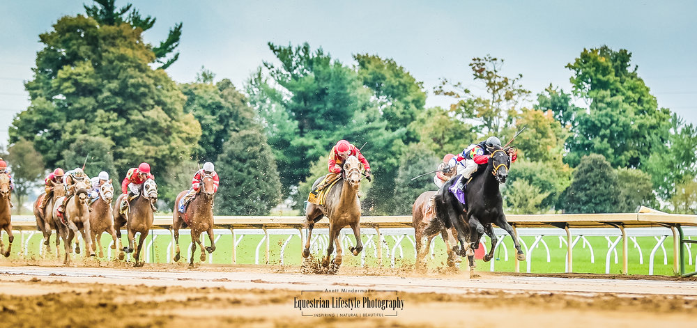 Keeneland Racetrack, race horse racing down to the finish line