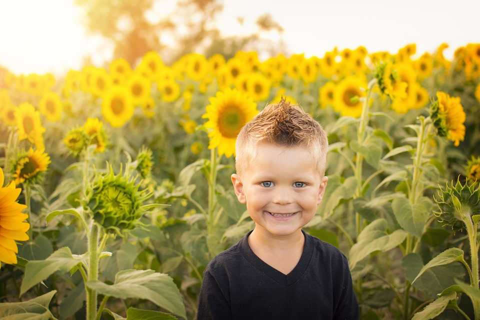 roanoke-va-child-care-babysitter-services-companion-home-care-kid-with-sunflowers
