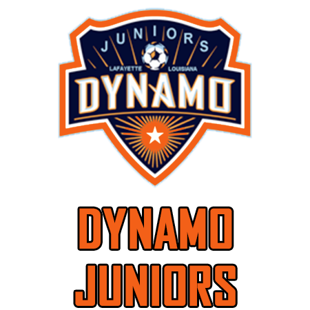Dynamo Section Logo.png