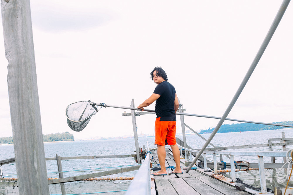 Shannon Lim is a financial planner-turned-fish farmer. As Founder and Director of OnHand Agrarian, he designs Integrated Multi-Trophic Aquaculture Systems (IMTRAS), which replicate the balanced ecosystems that are found in the wild.