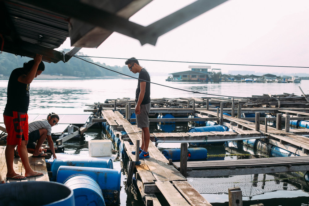 After a bad storm, Shannon, Marcus and Daniel assess the damage done to the wooden structure and strategise on how to replace the blue barrels, which provide the buoyancy needed to keep the kelong afloat.