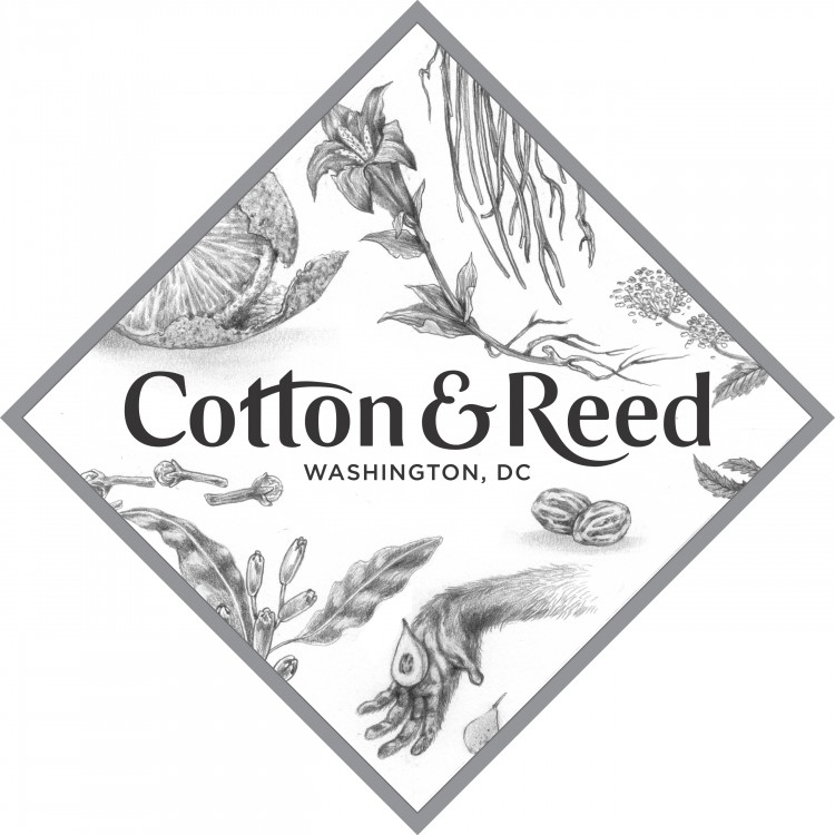 cotton and reed logo - Summit