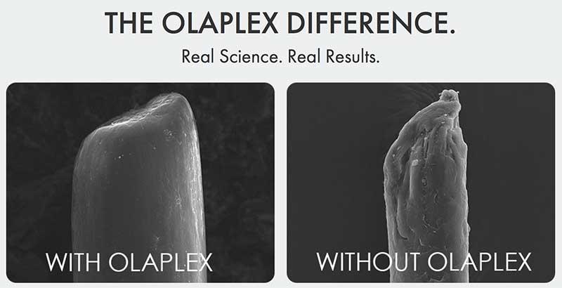 Fonte immagine: https://olaplex.com