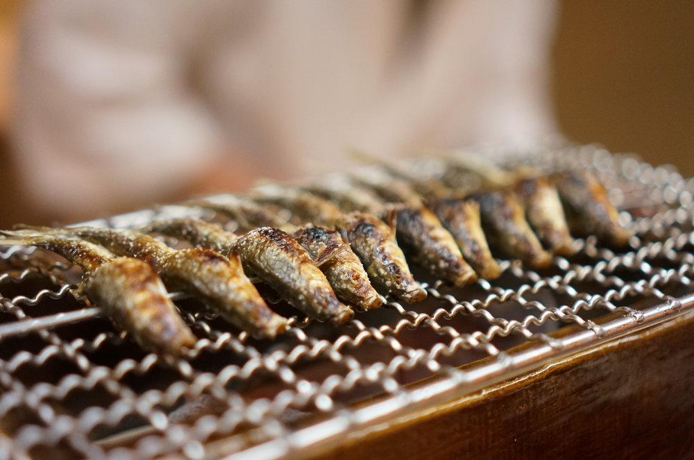 Lake Biwa's native fish, Uroko.   琵琶湖固有の魚・もろこ。