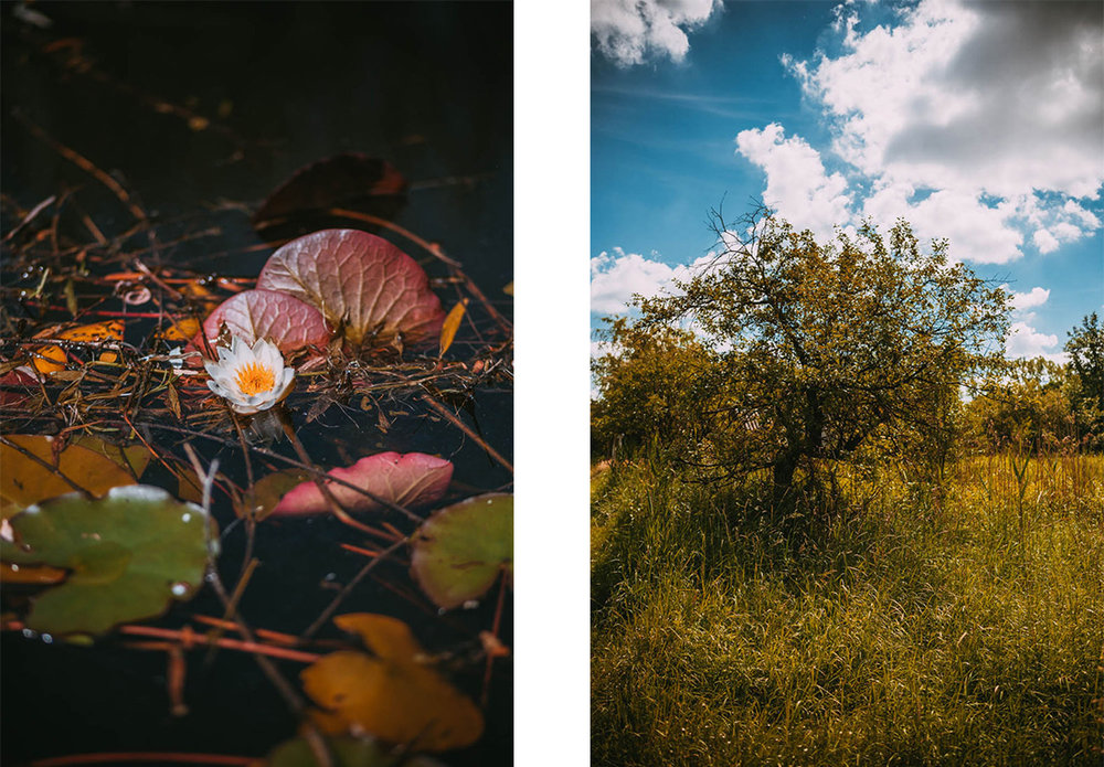 62-Pan-Zajac-Fotograf-slubny-otwock-_sala-weselna-wodokty.jpg
