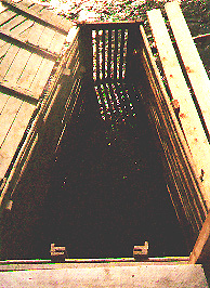 kjaerra5.jpg