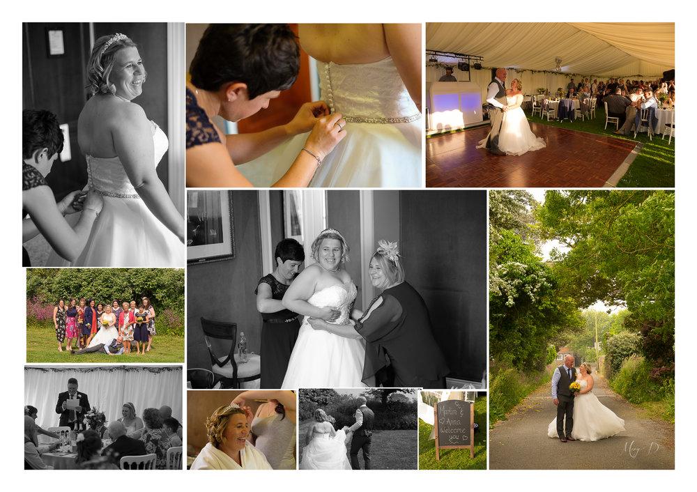 anna collage 5.jpg