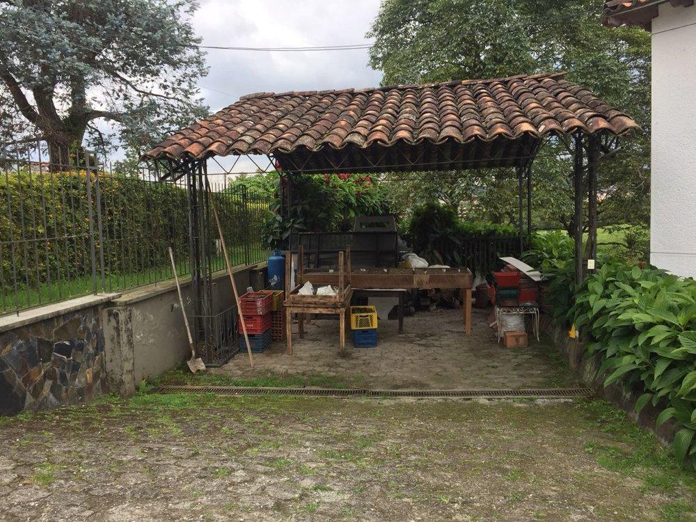Miguel's House Seedlings 1.jpg