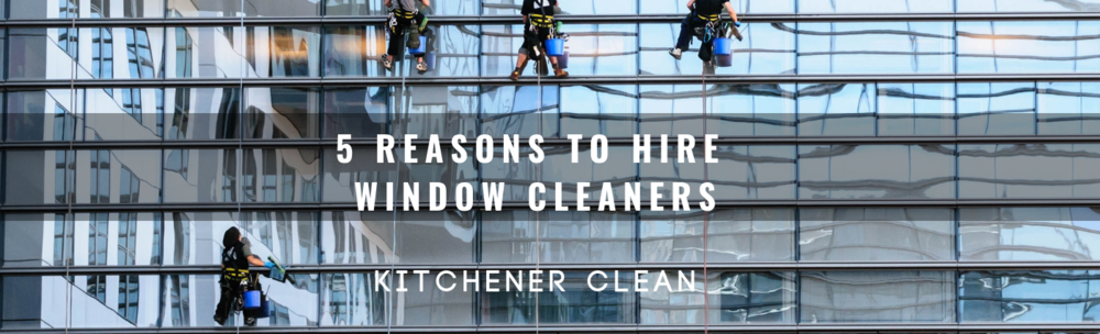 window cleaner.png