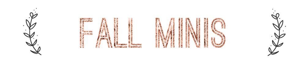 BBP-FallMini-5x5-v3-website version-header.png
