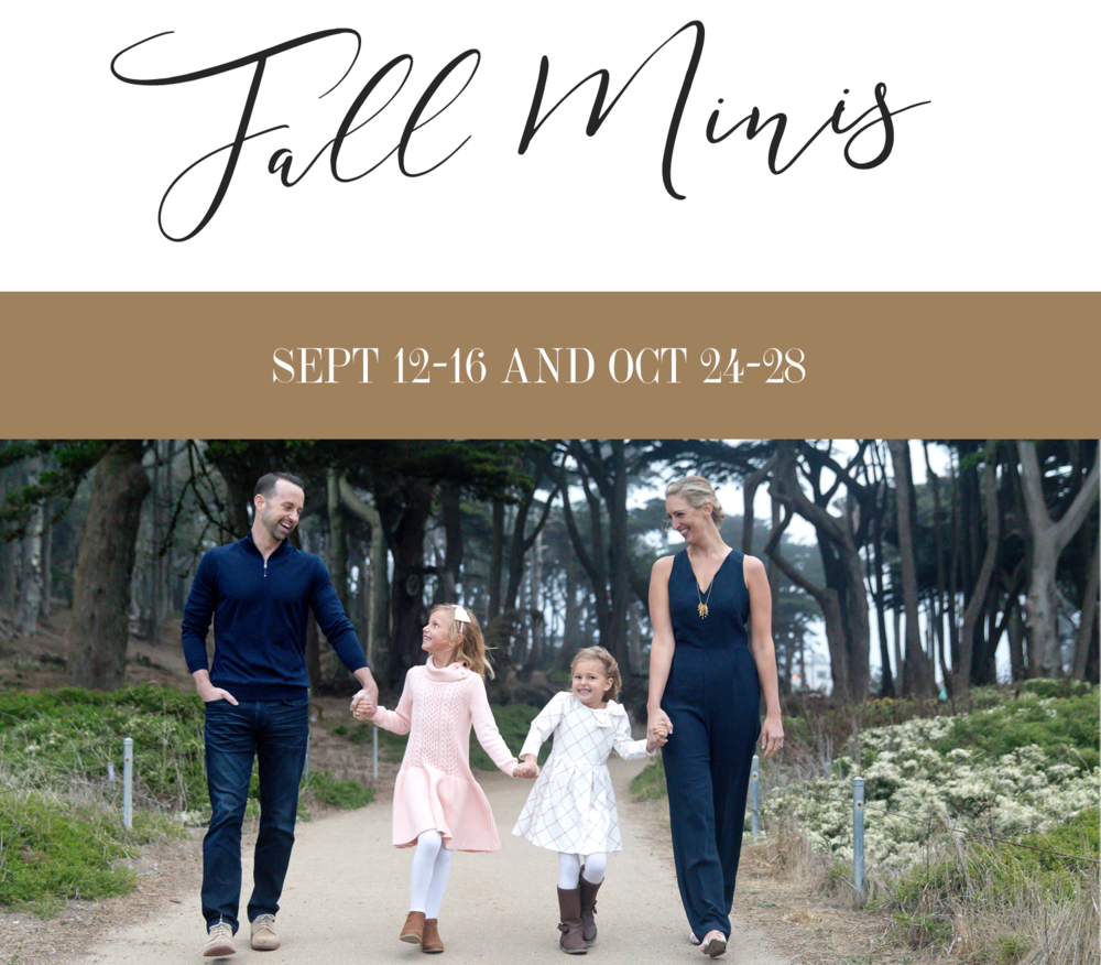 Brooke Bryand-Fall Mini Sessions-San Francisco Photographer-5x5-website.png