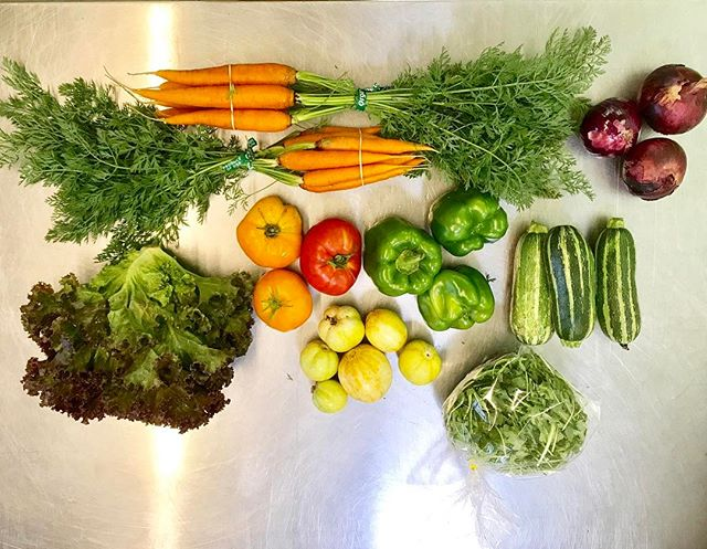 Totally awesome take on produce this week from @sunriseorganicfarm  Get yours delivered! $24 a week!  Link to sign up in the bio.