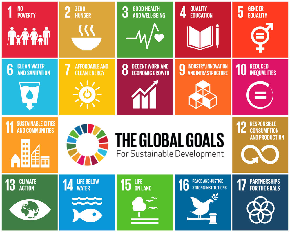 XVii = innovations and investing for the 17 SDGs