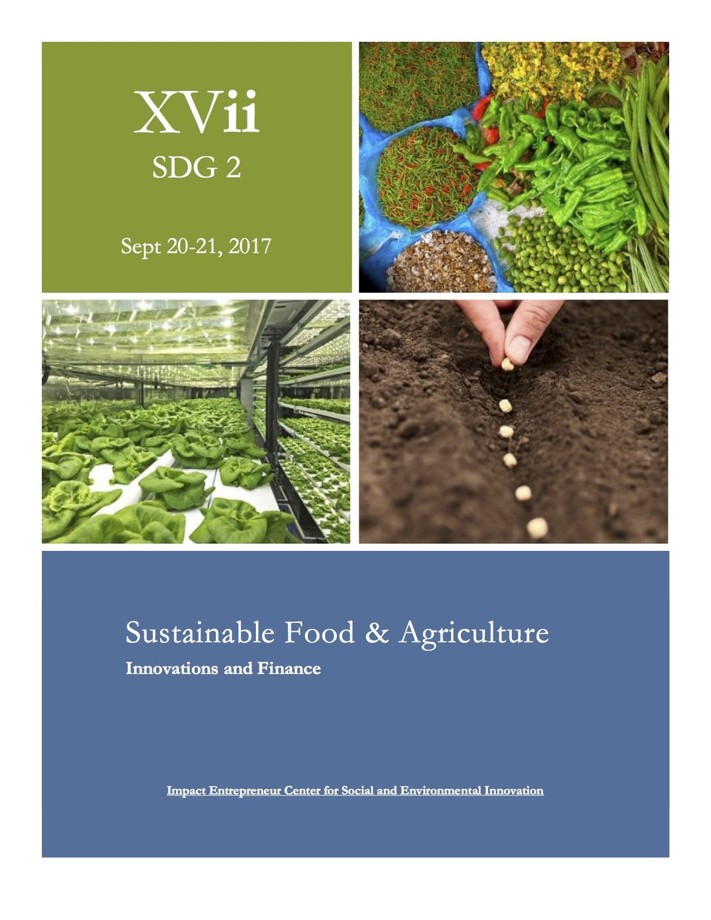The XVii Initiative's SDG 2 Program focuses on Sustainable Food and Agriculture
