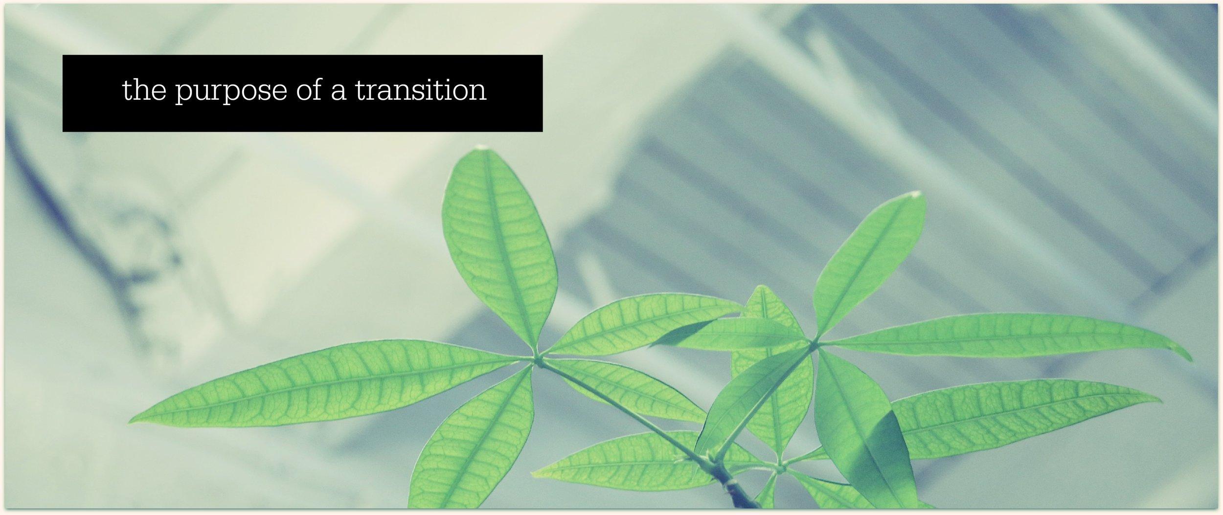 purpose of transition