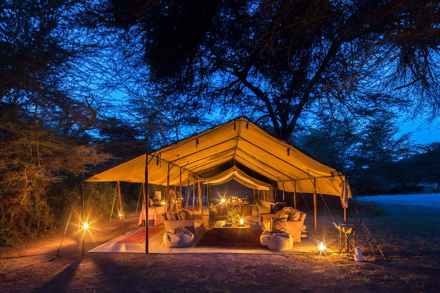 andthree-collective-luxury-safari-africa-LUXFAMWINTER0818.jpg