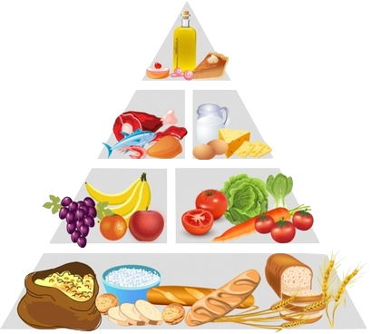 food_pyramid_311984.png