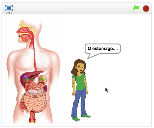 SCIENCE - Digestive System