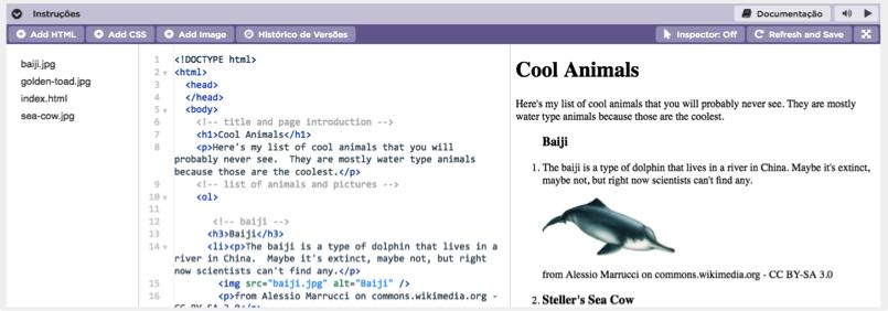 Desenvolvimento de Páginas de Internet usando HTML e CSS.