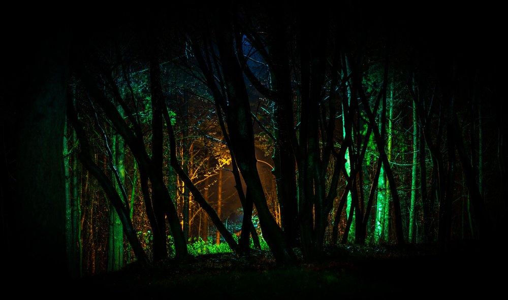 colors-dark-environment-754071.jpg